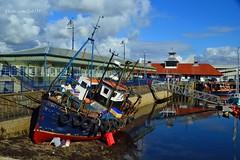 Sunbeam TT251 (Zak355) Tags: sunbeam tt251 rothesay fishingboat isleofbute bute harbour scotland scottish