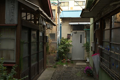West side of yokohama#17 (tetsuo5) Tags: alley nishiku explored ef35mmf20 eos5dmarkⅱ minamiasamacho 横浜 西区 南浅間町 路地 yokohama 16の裏