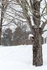 2013 NMH Storm Nemo (nmhschool) Tags: highschool nmh 2013 northfieldmounthermon winterscenic 201213 nmhschool stormnemo