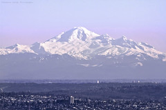 Mount Baker on a clear day (Explore: 17.02.2013) (Shannon Leigh Photography) Tags: winter mountain ice beauty vancouver landscape volcano washington cityscape baker view snowy glacier summit pacificnorthwest mountainview looming mtbaker lofty icey 1792 cascaderange mountainscape snowcap stratovolcano mountainous whatcomcounty kulshan cascadevolcano josephbaker february2013 shannonleighphotography