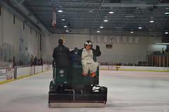 MSU Ice Bears  vs. Loyola University - Chicago (Adventurer Dustin Holmes) Tags: sports hockey sport penguin icehockey msu mascot div2 mascots zamboni collegehockey haca eishockey icebears hoki missouristateuniversity divisionii division2  divii  hokej 2013  hokejs hquei jgkorong hochei hokk    mediacomicepark ledoritulys hoci 02022013 020213 february22013