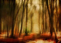 Take off......! (radonracer) Tags: winter motion blur forest surreal digiart wald radonart