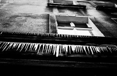 grin (ewitsoe) Tags: street city winter blackandwhite bw cold ice window 35mm season frozen nikon poland lookup icicle proverb poznan d80