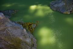 XD0A3087 (TheMillus) Tags: newzealand northisland waiotapu oceania devilsbath
