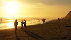 Beach Shuffle