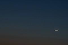 Comet PANSTARRS and new crescent moon (Bergersoft) Tags: moon crescent comet panstarrs