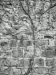 Eastern State Pen 03-13_189 (AbbyB.) Tags: philadelphia decay prison jail easternstatepenitentiary pennslyvania disintegrate