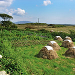 "Sky Road Hay Stacks <a style=""margin-left:10px; font-size:0.8em;"" href=""http://www.flickr.com/photos/89335711@N00/8595607079/"" target=""_blank"">@flickr</a>"