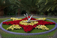 The floral clock (smir_001 (on/off)) Tags: park city flowers parque winter red santacruz flower clock floral yellow garden landscape spain alley display january spanish tenerife canary canaryislands floralclock parquegarcasanabria canoneos7d