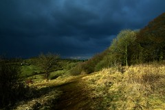 A Path to the Storm (Mike Dorey) Tags: uk greatbritain trees light shadow england sky sun storm southwest tree green english field clouds rural woodland landscape woods nikon place britain path country hill dramatic stormy cotswolds gloucestershire hills shade gloucester brittish englishness crickley