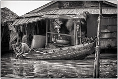 85_Tonle Sap Lake_(Series)_Clic on image for better viewing (Serge THELLIER) Tags: night nikon cambodge cambodia lac unesco reap thom siemreap angkor phnombakheng taprohm d3 battambang preahkhan bayon angkorthom takeo banteaysrei banteaykdei neakpean tasom preah angkorvat phnomkulen kbalspean preahpalilay pursat srahsrang thommanon banteaysamré lolei chausaytevoda kô phimeanakas bakseichamkrong sangker roluosbakong phnomkrom prasatkravan preahpithu speanthma tanei phnombok tonlésap prasatsuorprat khleang akyum mebonoriental terrassedeséléphants nikond3 d300s batchum barayoriental yasodharapura preahkô terrasseduroilépreux pouthisat nikond300s baphûon unesco1997 sergethellier prèrup angkor2013 mangalārtha barayoccidental krolkô mebonoccidental siemreapbynight bynightsiem