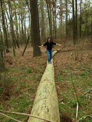 Log Challenge #2 (Editor B) Tags: mississippi photostream xy