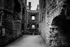 "Raglan Castle • <a style=""font-size:0.8em;"" href=""http://www.flickr.com/photos/32236014@N07/8652784379/"" target=""_blank"">View on Flickr</a>"