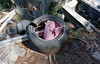 Ø (jamiehladky) Tags: pink abandoned film broken 35mm canon eos bucket sand junk floor kodak iso400 australian australia 400 canberra portra act tyre eos3 portra400 fyshwick 1635mmf28lii jamiehladky hladky