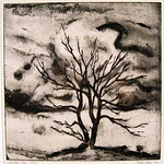 "<b>Winter Tree</b><br/> Page, Etching, LFAC 163, Print<a href=""http://farm9.static.flickr.com/8532/8671722971_0b0ab51541_o.jpg"" title=""High res"">∝</a>"