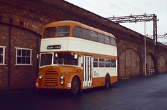 3270. AEK 1B Greater Manchester Transport (chucklebuster) Tags: leyland massey pd2