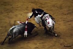 Pablo Hermoso de Mendoza (HugoHernandez1) Tags: toros sanluispotosi eldomo pablohermosodemendoza torosensanluispotosi