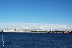 TALLIN-MUSEOS-15 (e_velo ()) Tags: 2016 summer estiu verano estonia tallin olympus e620 travels viatges viajes museums museos museus ships barcos vaixells