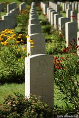 DN9A1256 (Josette Veltman) Tags: holten holterberg cemetery begraafplaats warcemetery oorlog wo2 slachtoffers canadese soldaten tweedewereldoorlog sallandseheuvelrug overijssel salland