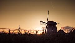 Sunset Background (D.ROS) Tags: 2016 black blue clouds day field green light magenta meadow mill nature netherlands orange outdoor polder schagen sun sunset yellow supershot