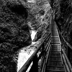 R6234228_medium_1200 (ThomasKrannich) Tags: austria carinthia raggaschlucht blackandwhite canyon hiking monochrome trail nobody outdoor mtcand