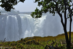 15-09-22 Ruta Okavango Zimbabwe (56) Victoria R01 (Nikobo3) Tags: frica zimbabwe cataratasvictoria paisajes naturaleza unesco travel viajes nikon nikond800 d800 nikon247028 nikobo josgarcacobo flickrtravelaward ngc