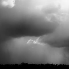 Springtime Skies 006 (noahbw) Tags: d5000 nikon abstract blackwhite blackandwhite bw clouds horizon landscape minimal minimalism monochrome natural noahbw silhouette sky spring square storm stormy trees weather