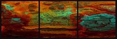 20160816 WoutvanMullem Drieluik Hout Etalage 4-2 (Wout van Mullem) Tags: kunst de etalage zuidhorn wout van mullem kleurrijk boomschors roest rust drieluik tryptich triptiek
