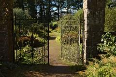 Wyndcliffe Court Sculpture Gardens (elhawk) Tags: sculpturegarden wyndcliffecourt