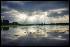 Beautiful nature (Menno Damste) Tags: biesbosch brabant drimmelen national park natuur nature water clouds sun