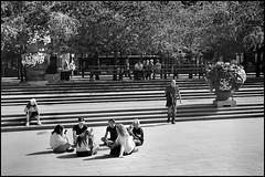 Socialising (perohs) Tags: socialmedia youths stockholm nikond3 nikon d3 kungstrdgrden street streetphotography