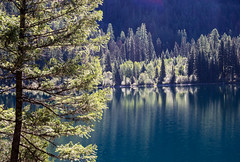 Soft Reflections (ebhenders) Tags: holland lake montana swan valley fall color reflection water trees