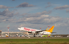 TC-CPY Boeing 737-8H6 Pegasus Airlines (ssajiji) Tags: boeing boeing737 canon canon70200 canon70200f4l canon7d dme domodedovo moscow pegasusairlines russia spotting tccpy uudd air aircraft airliner airplane canoneos7d jet plane vehicle