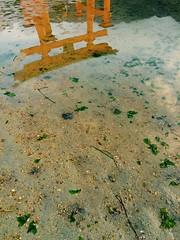 (uucoco) Tags: miyajima itsukushima shrine water red hiroshima japan sea