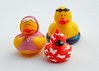 9/27/16 A Duckie Family (Karol A Olson) Tags: rubberduckies rubberducks toys ducks sep16 project3662016