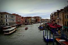 DSC_0357 (ricardo0404) Tags: honeymoon itlia luademel ricardocardoso ricardo0404gmailcom veneza rcardoso ricardo cardoso italy italia venice venezia