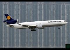 McDonnell Douglas | MD-11/F | Lufthansa Cargo | D-ALCJ | Hong Kong | HKG | VHHH (Christian Junker | Photography) Tags: nikon nikkor d800 d800e dslr 70200mm plane aircraft mcdonnelldouglas md11f m11 md11 m1f lufthansacargo gec lh lh8476 gec8476 lufthansacargo8476 dalcj heavy widebody trijet classicplane cargo freighter staralliance  namasteindia arrival landing 25l airline airport aviation planespotting 48802 642 48802642 hongkonginternationalairport cheklapkok vhhh hkg clk hkia hongkong sar china asia lantau terminal2 t2 skydeck christianjunker flickrtravelaward flickraward zensational hongkongphotos worldtrekker superflickers