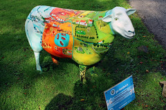 Hello Dolly (Cumberland Patriot) Tags: go herdwick goherdwick painted sheep ewe cumbria cumbrian calvert trust public art english lake district hello dolly