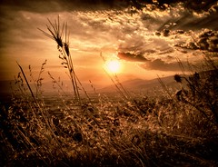 (giorgosgrigoriadis16) Tags: sunset nature landscape hellas greece drama   dhrama greeklandscape greecelandscape canonnature dramascenes  canonlandscape canongreece canonpowershotg10 dramalandscapes canoncloudsandsky cloudsanssky eastmakedonia canonatmosphere