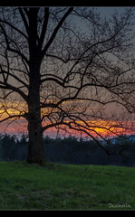 Cades Cove Sunset (jeannie'spix) Tags: sunset tennessee cadescove 3cadescove