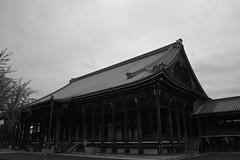 西本願寺 御影堂 (KG_2011) Tags: kyoto sigma 京都 merrill dp1 西本願寺