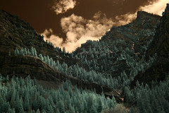 Hidden Waterfall (arbyreed) Tags: trees mountains pine ir waterfall fir bridalveilfalls cascademountain provocanyon infraredphotography utahcountyutah arbyreed bridalveilupperfalls 665nanometerinfrared