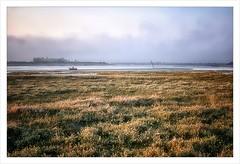 Marais Baie de Sallenelles (akimoss) Tags: mer marais barque baie brumes sallenelles vgtations