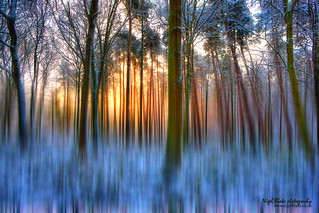 Motion blurred dawn