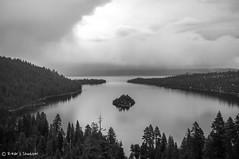 Lake Tahoe (B_Zaww) Tags: bw usa tree water island blackwhite nevada tahoe laketahoe fujifilm sierranevada freshwater xseries x100