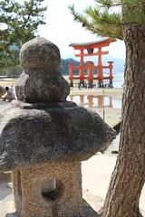 Viewing the great torii (10b travelling) Tags: wood red crimson japan temple wooden gate shrine asia icon hiroshima miyajima iconic torii jinja templo vermilion 2012 tempel itsukushima itsukushimajinja honshu itsukujima itsukujimajinja carstentenbrink