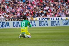 Granada CF - Mlaga (granadacfweb) Tags: football granada futbol mlaga loscarmenes granadacf ligabbva granadacfweb