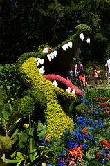 Tick Tock the Croc (Francine Schumpert) Tags: flowers nature epcot topiary peterpan disney crocodile ticktock flowergardenfestival nikond5100