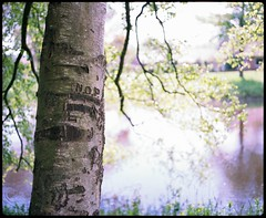 (Louis de Leeuw) Tags: camera 120 film netherlands colors analog canon spring shoot colours natural kodak 4 nederland negative saturation medium format mf scanning expired range portra finder canoscan 67 drenthe lightroom rollfilm plaubel meppel makina c41 160nc 8800f rolfilm