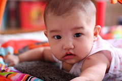 17W2D (Little Bunny 2013) Tags: baby girl taiwan